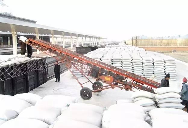 南北玉米价格差异较大 北粮南运需求旺盛 用集装箱运粮你见过吗