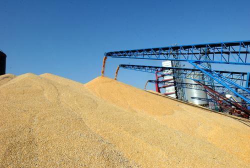 内贸散粮运输集装箱化趋势分析