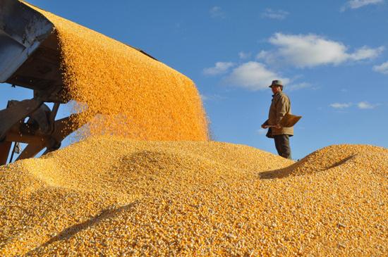 """《粮食经销商:国家发改委印发粮食物流业""""十三五""""发展规划》"""
